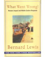 What Went Wrong? - Lewis, Bernard