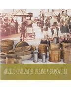 Muzeul civilizatiei urbane a Brasovului - Ligia Fulga
