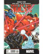Hulk No. 20 - Loeb, Jeph, McGuiness, Ed