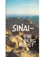 Sinai - ein Berg redet - M. Basilea Schlink