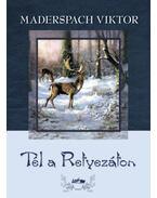 Tél a Retyezáton - Maderspach Viktor