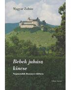 Bebek juhász kincse - Magyar Zoltán