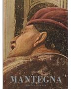 Mantegna - Paolo D'Ancona