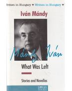 What Was Left - Mándy Iván