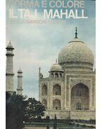 Forma e colore il Taj Mahal - Mario Bussagli