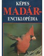 Képes madárenciklopédia - Mark Rauzon