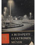 75 éves a Budapesti Elektromos Művek - Marton Tibor