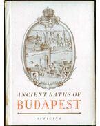 Ancient Baths of Budapest - Medriczky Andor