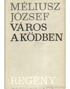 Város a ködben - Méliusz József
