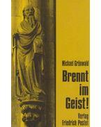 Brennt im Geist! - Michael Grünwald