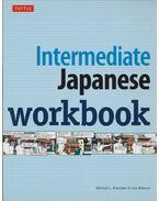 Intermediate Japanese workbook - Michael L. Kluemper, Lisa Berkson