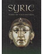 Syrie, terre de civilisations - Michel Fortin