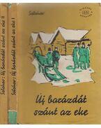 Új barázdát szánt az eke I-II. kötet - Mihail Solohov