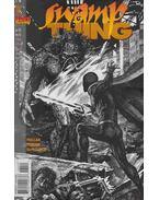 Swamp Thing 164. - Millar, Mark, Hester, Phil