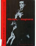 Hibridno imaginarno: Slikarstvo i/ili ekran - Misko Suvakovic