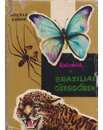 Kalandok a brazíliai őserdőben - Molnár Gábor