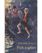Fiúk a gáton - Molnár Gyula