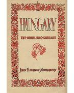 Hungary, the Unwilling Satellite - Montgomery, John Flournoy