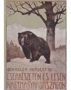 Cserkészeten és lesen Nagymagyarországon - Nadler Herbert