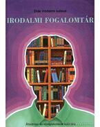 Irodalmi fogalomtár - Nagy Zoltán