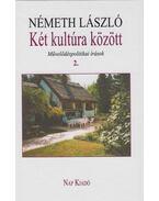 Két kultúra között. 2. kötet - Németh László