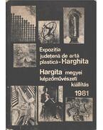 Hargita megyei képzőművészeti kiállítás 1981 - Nicolae Bucur, Gaál András