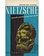 Zeitgemässes und Unzeitgemässes - Nietzsche