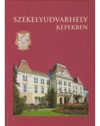 Székelyudvarhely képekben - Novák Károly-István