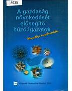 A gazdaság növekedését elősegítő húzóágazatok - nemzetközi összehasonlításban - Nyitrai Ferencné