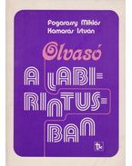 Olvasó a labirintusban (dedikált) - Fogarassy Miklós, Kamarás István