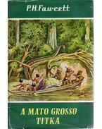 A Mato Grosso titka - P.H. Fawcett