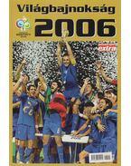 Világbajnokság 2006 - Pajor-Gyulai László
