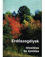 Erdőszegélyek létesítése és ápolása - Pataki Tamás