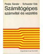 Számítógépes számvitel és vezetés - Perjés Sándor, Schuszter Ede