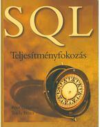 SQL (Teljesítményfokozás) - Peter Gulutzan, Trudy Pelzer