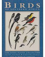 Birds of Southern Africa - Peter Hayman, Norman Arlott, Tarboton, Warwick