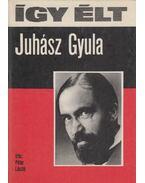 Így élt Juhász Gyula - Péter László