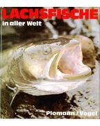 Lachsfische in aller Welt - Plomann, Jürgen