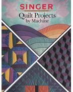 Quilt Projects by Machine - Lori Ritter