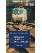 Sztrájkok a Magyar Államvasutaknál 1989-1995 - Rákos József, Bajnai Gábor