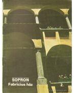 Sopron - Fabricius ház 2. - Rappai Zsuzsa
