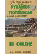 The Pyramids of Teotihuacan - Richard Bloomgarden