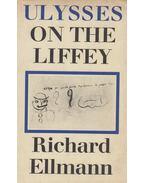 Ulysses on the Liffey - Richard Ellmann