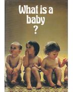 What is a baby? - Richard Exley, Helen Exley