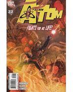 The All New Atom 22. - Rick Remender, Olliffe, Pat