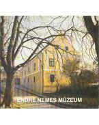 Endre Nemes Múzeum - Romváry Ferenc