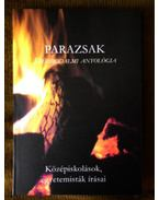 Parazsak - Középiskolások, egyetemisták írásai - Rozmán Kristóf