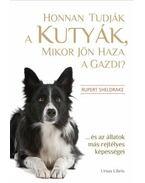 Honnan tudják a kutyák, mikor jön haza a gazdi? - Rupert Sheldrake