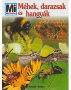 Méhek, darazsak és hangyák - Sabine Steghaus-Kovac