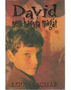 David nem hagyja magát - Sachar, Louis